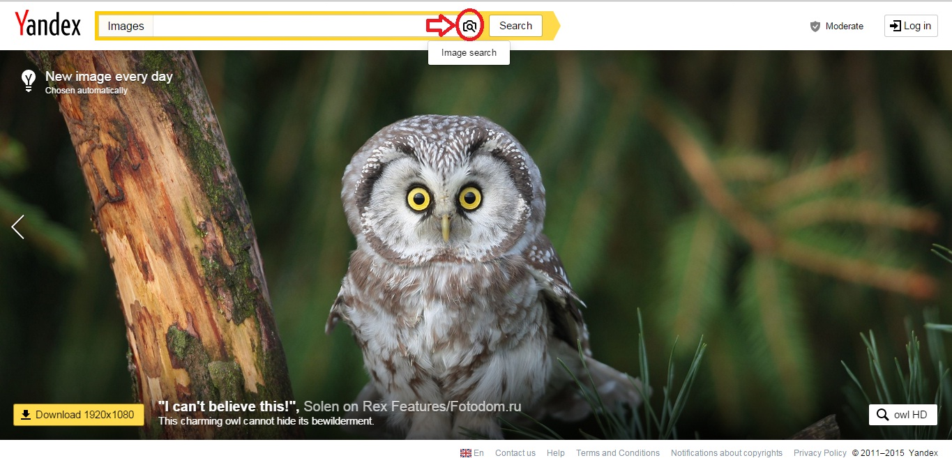 yandex_images_search