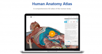 اپلیکیشن پزشکی هیومن آناتومی اطلس